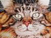 Calico Cat Custom Pencil Portrait