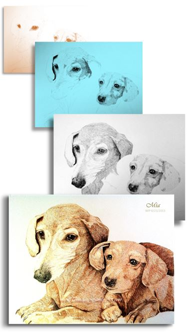 Sketch Portraits for Pets in Fort Worth, TX - Timeless Family Art